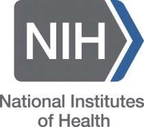 Post-doctoral/Post-baccalaureate Bioethics Fellowship at the NIH